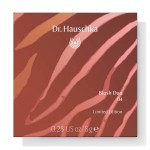 Dr. Hauschka Natural Spirits Blush Duo 04 apricot rosé - 5.7g